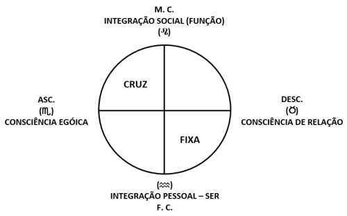 Imagem15